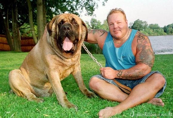 Gyvūnai-gigantai