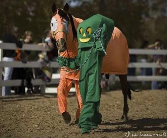 Arkliai su kostiumais