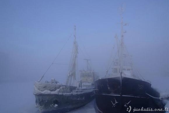 Laivai hibernuoja