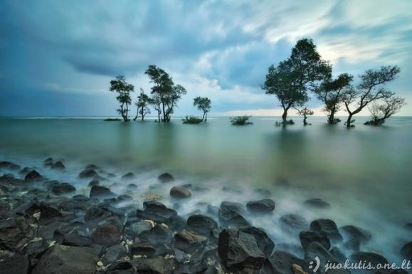 Indonezijos peizažai