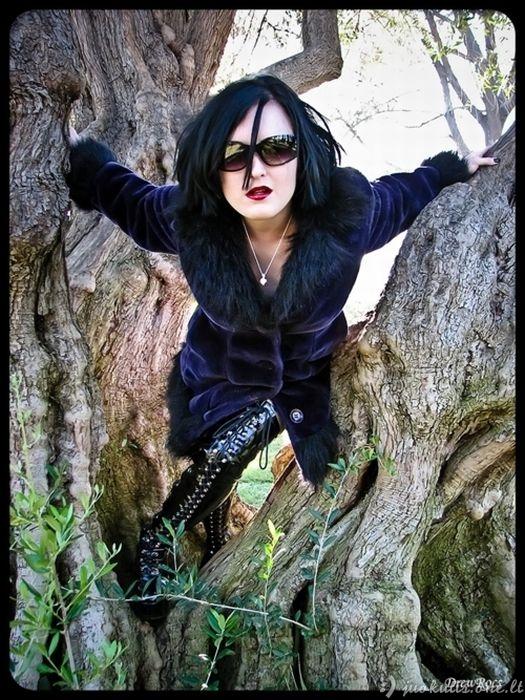 Gotai medžiuose