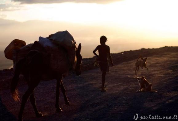 Haitis: 2 metai po tragedijos