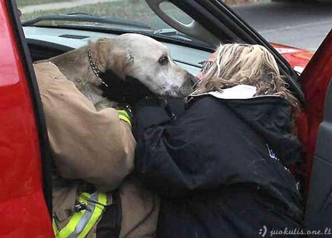 Ugniagesiai išgelbėjo šunį