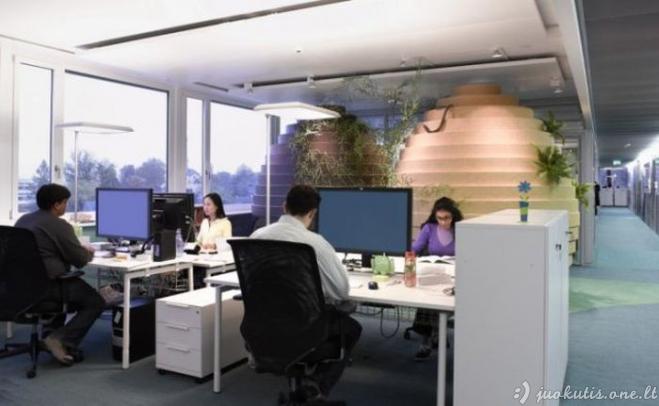 Gražūs ofisai