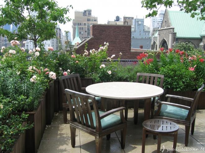 Įspūdingi sodai ant stogo