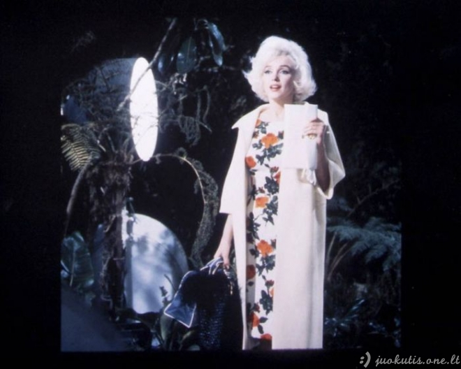 Dar nematytos Marilyn Monroe nuotraukos