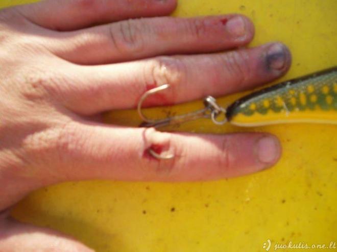 Žiaurūs žvejų feilai