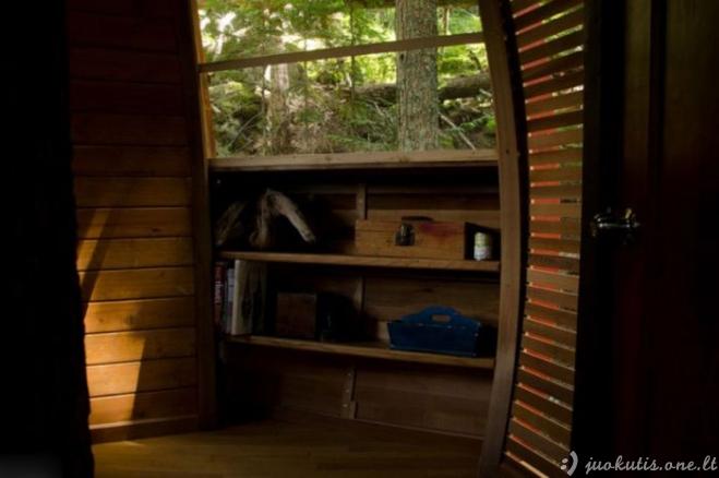 Mažas namelis medyje