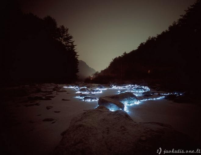 """Instaliacija """"Žvaigždėtos naktys"""""""