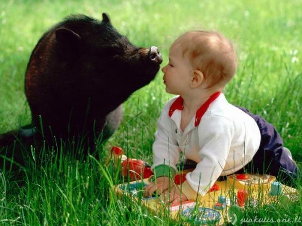 Žmonės ir gyvūnai