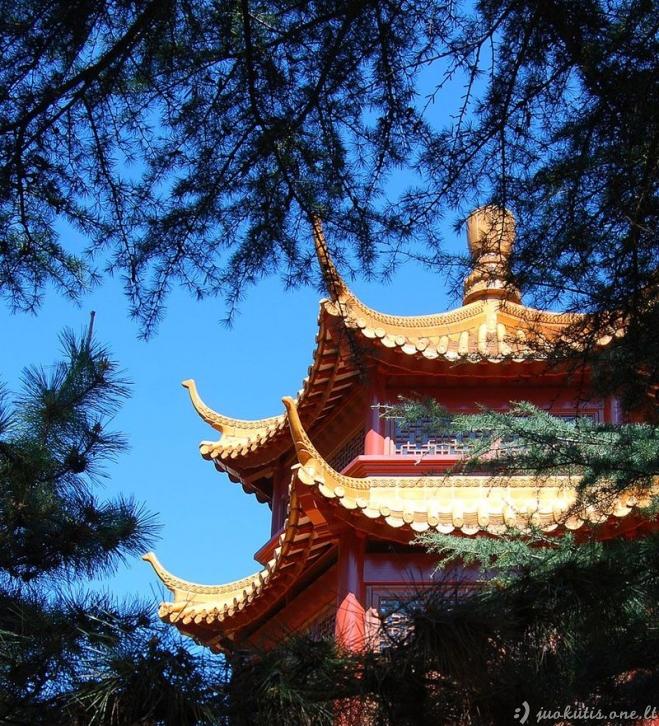 Kiniški sodeliai