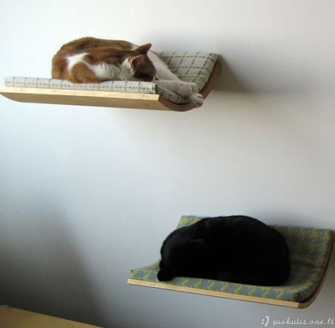 Labai įdomios lovos