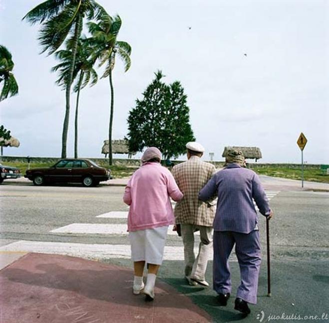Turtingi Majamio pensininkai