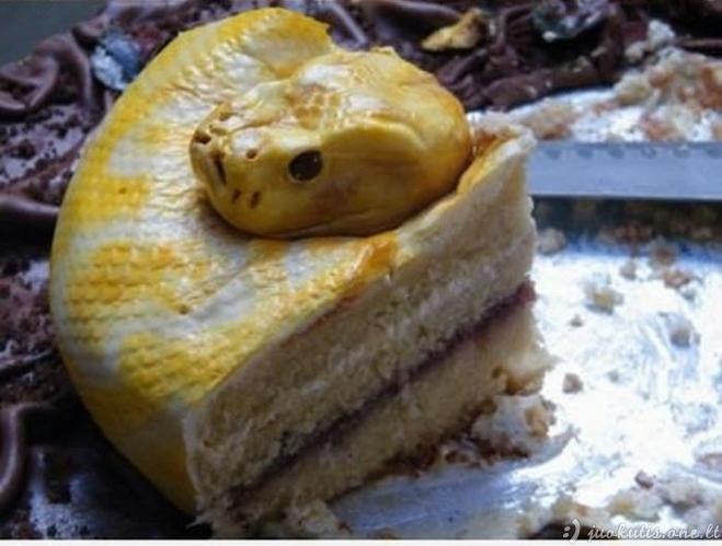 Neįtikėtina, bet tai netikra gyvatė