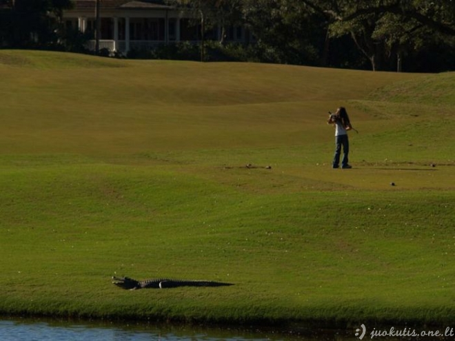 Ekstremaliausias golfo laukas pasaulyje