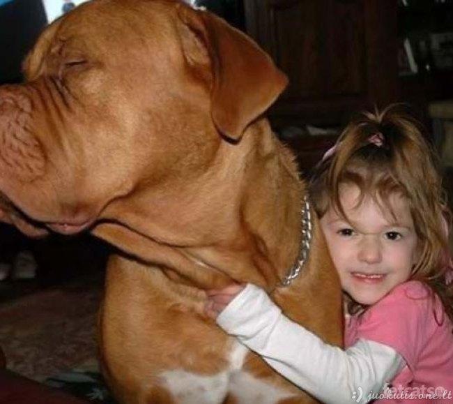 Toks mielas šuniukas