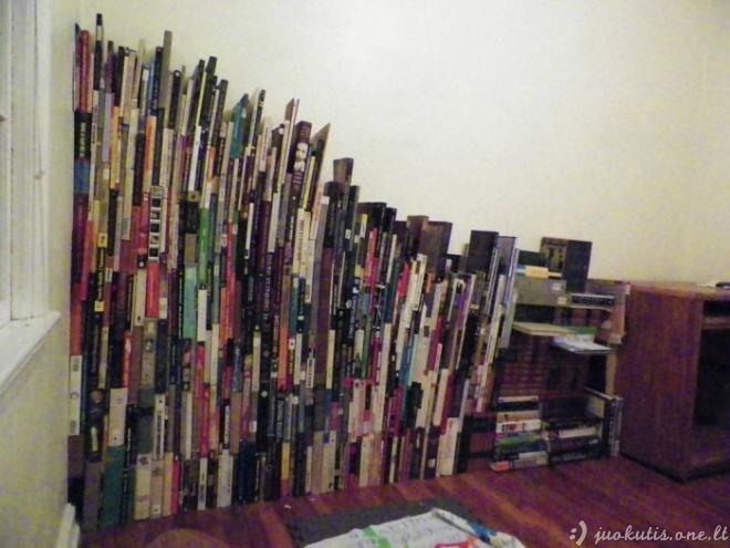 Ką daryti, jei neturi knygų lentynos?