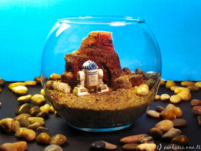 Žvaigždžių karai akvariumuose