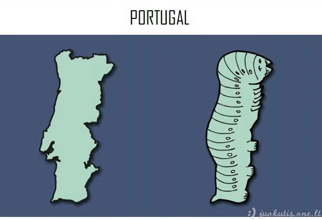 Į ką karikaūristams panašios Europos šalys