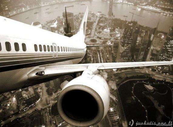 Aviacijos grožis
