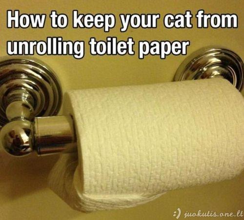 Paprastos, bet labai naudingos idėjos