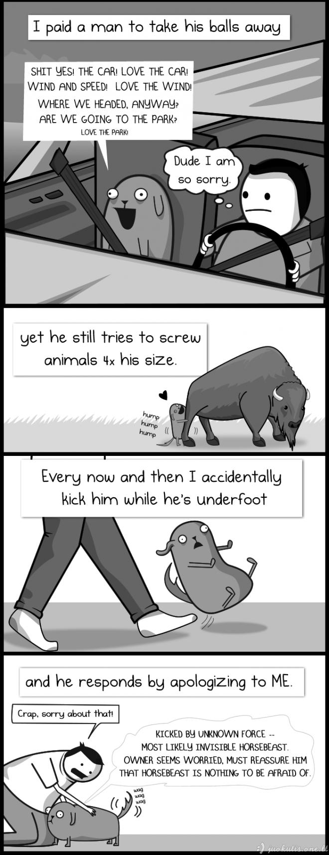 Šuns paradoksas