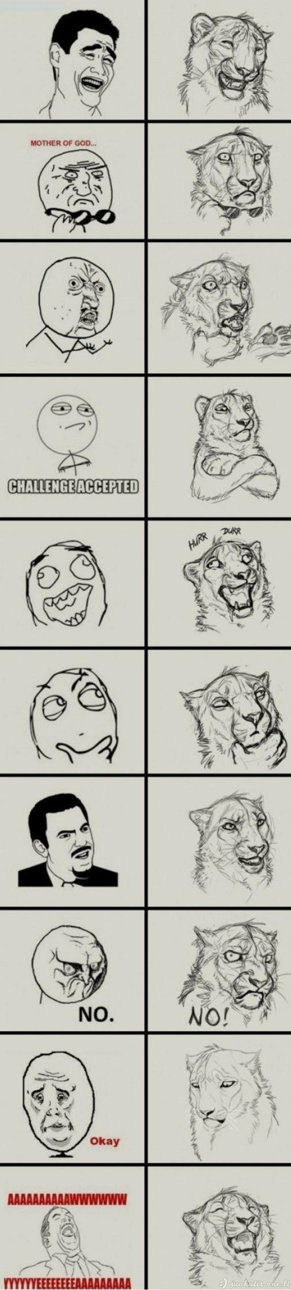 Liūtiški memai