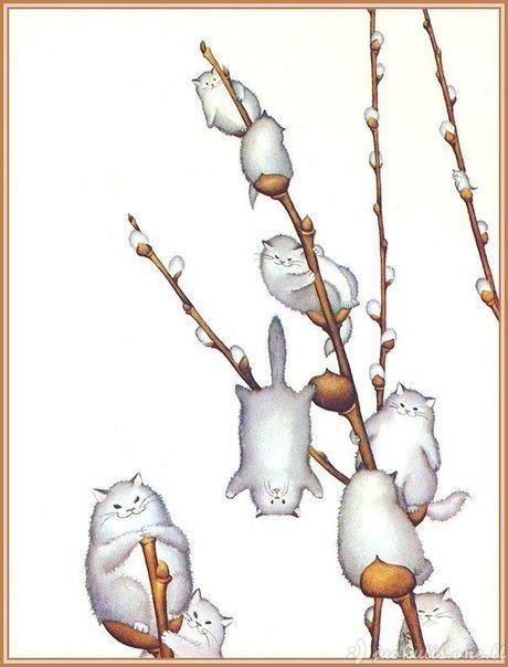 Kačiukai ant kačiukų