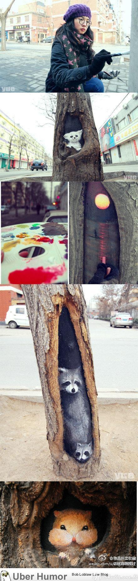Medžių drėvių paveikslai