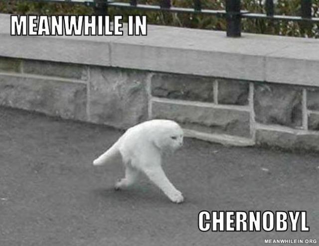 Tuo tarpu Černobilyje