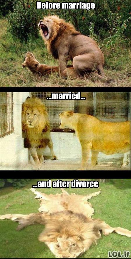 Vedybinis gyvenimas