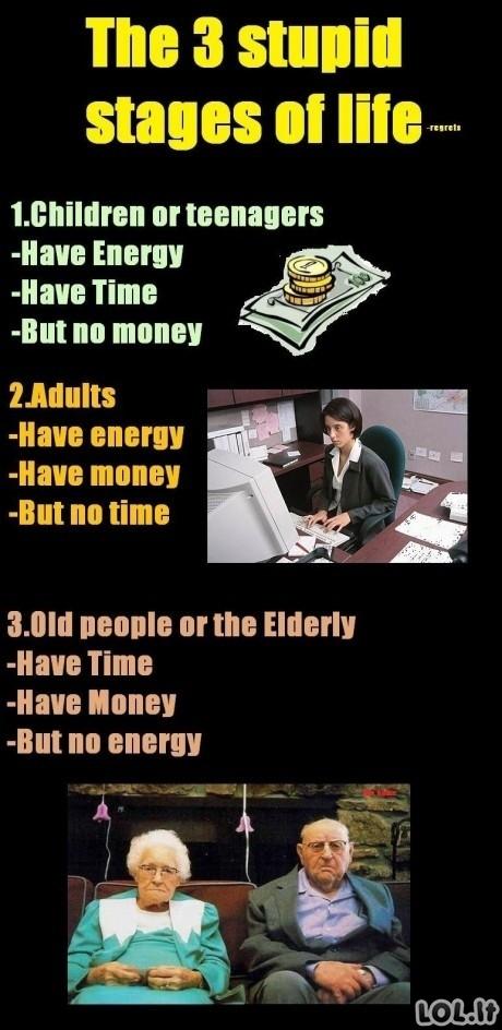 Trys kvailos gyvenimo stadijos
