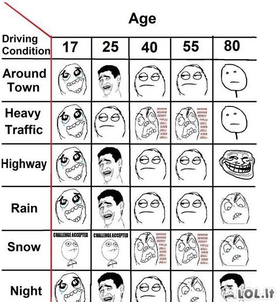 Mėmės vairuotojai