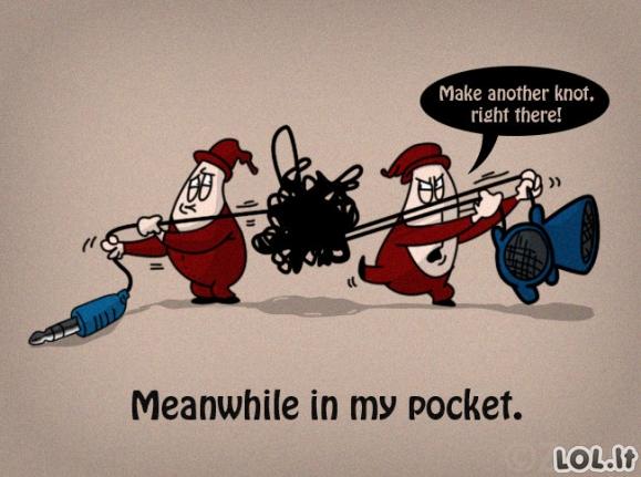 Tuo tarpu kišenėje
