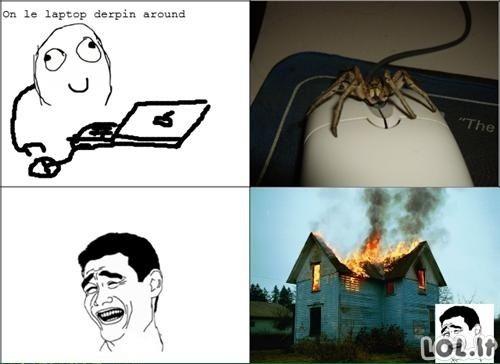 Pelė-voras