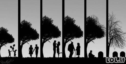 Gyvenimo meilė
