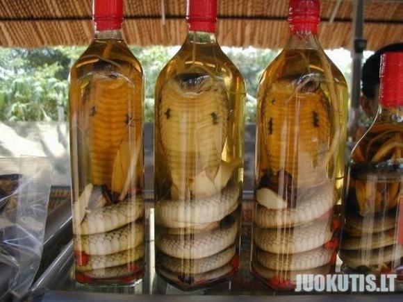 Gyvačių gėrimas