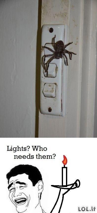 Šviesos