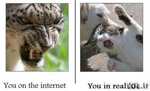 Internete ir realybėje