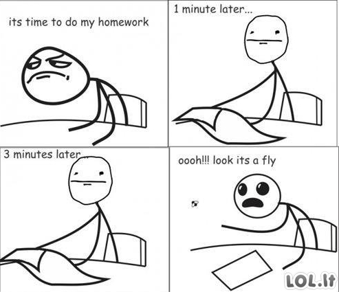 Laikas namų darbams