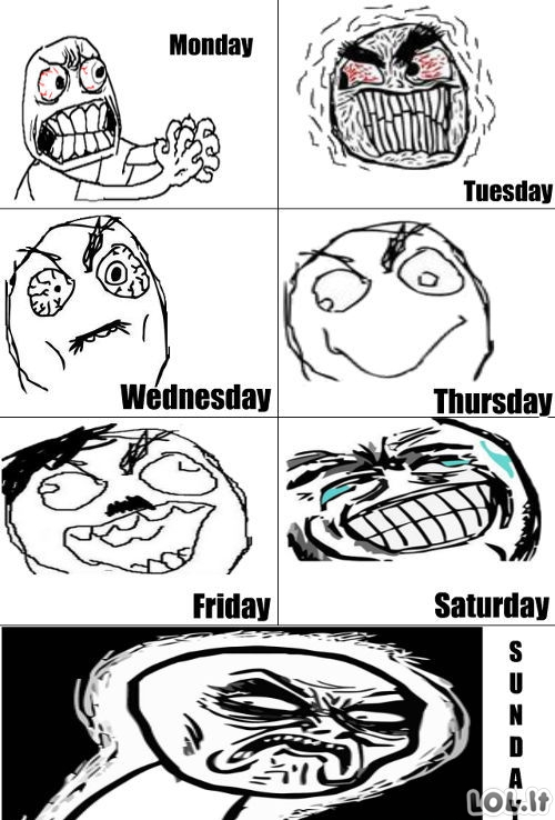 Meme savaitė