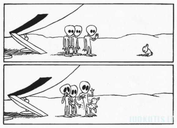 Savižudžiai zuikučiai