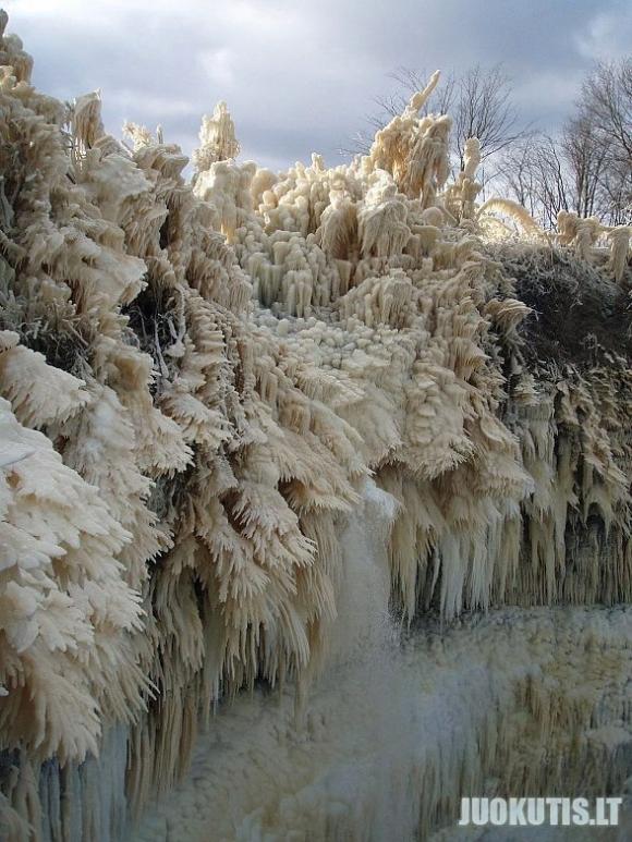 Žiemos grožybės