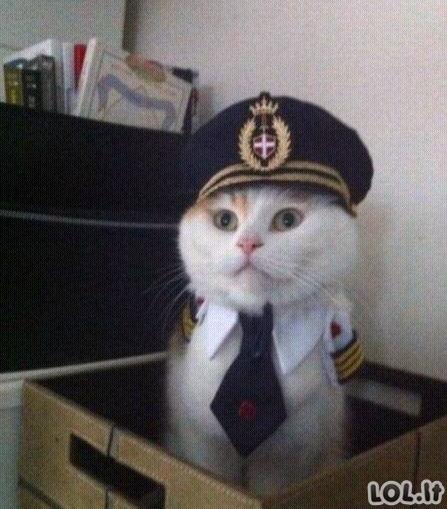Lėktuvo pilotas sako...