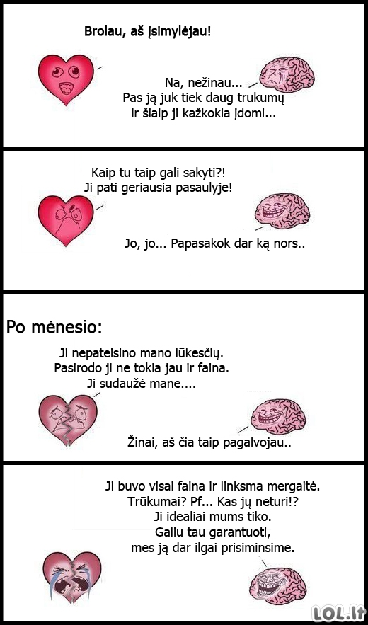 Širdies ir smegenų pokalbis