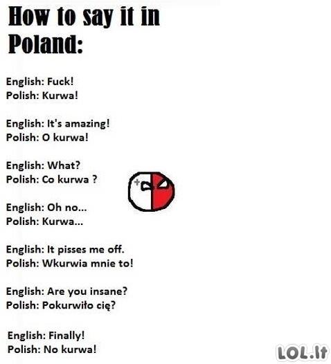 Lenkiškas žodynas