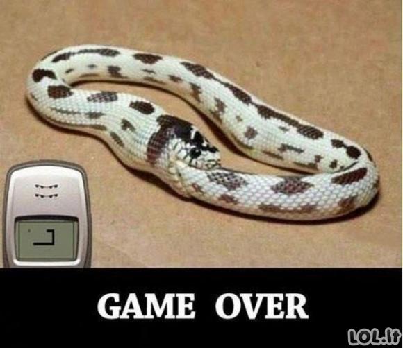 Žaidimas baigtas