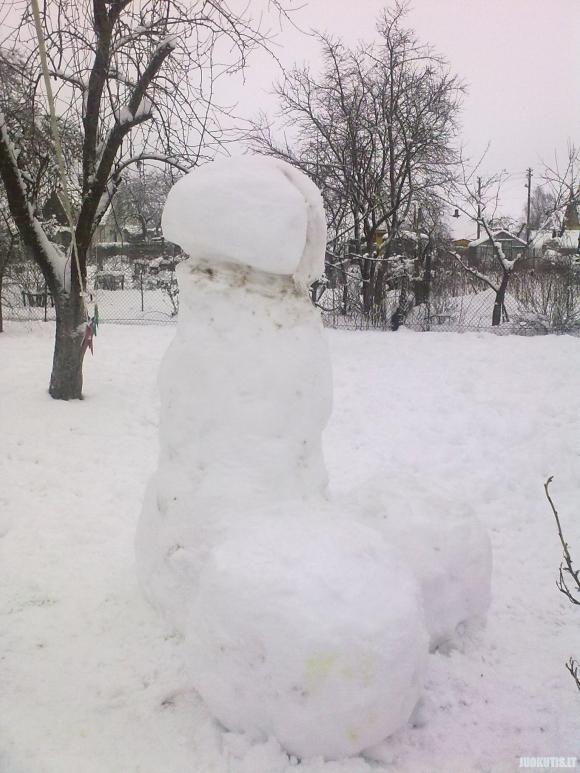 Sniego senis