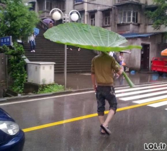 Lady Gagos skėtis