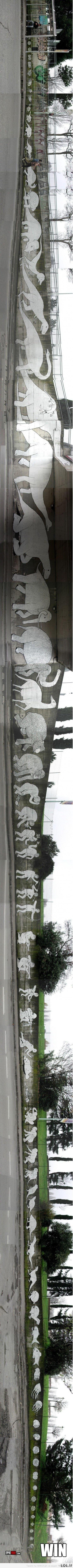 Visa evoliucija per vieną graffiti